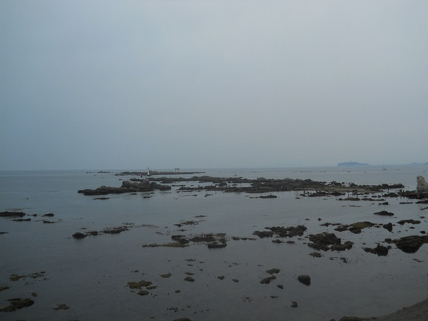 曇り空だけど葉山の海は透明度が高い