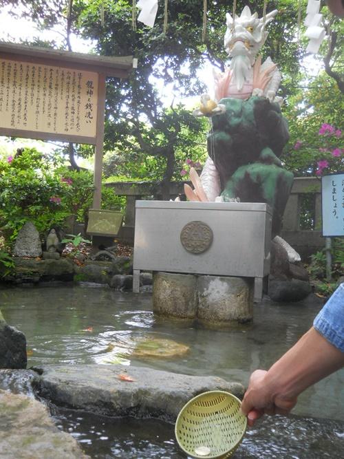 江の島の龍神で銭洗い